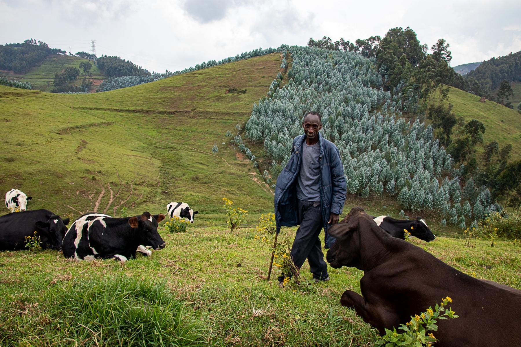 Ruanda, 2019: Kleinbauer Edison Kabenga